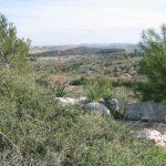 Biblical park